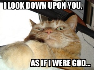 Lolcat_God_by_loezzy